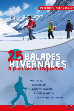 25 balades hivernales à pied ou en raquettes